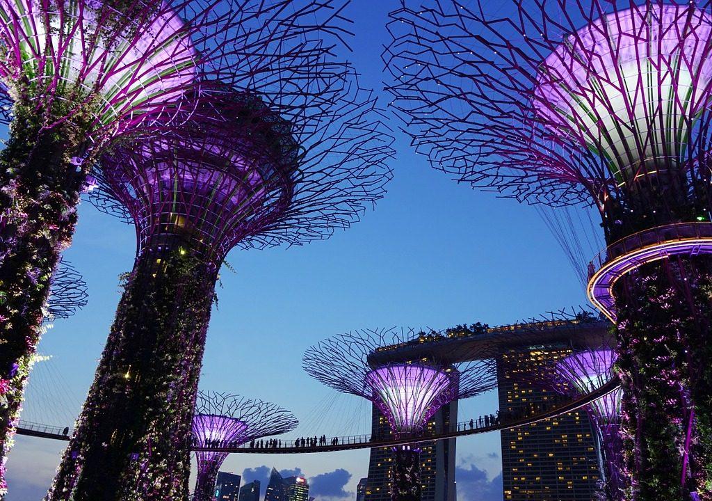 voli in offerta per singapore