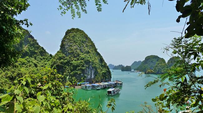 voli low cost per il vietnam